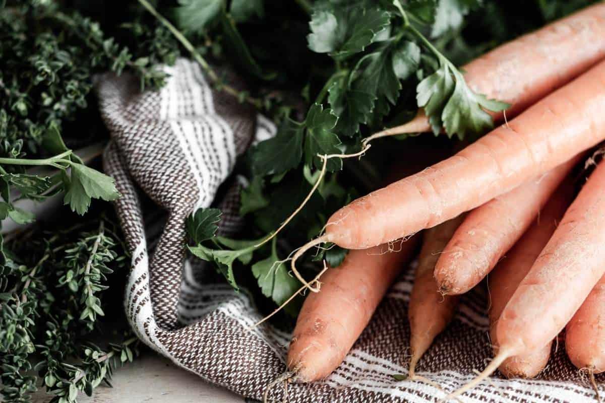carrots on burlap
