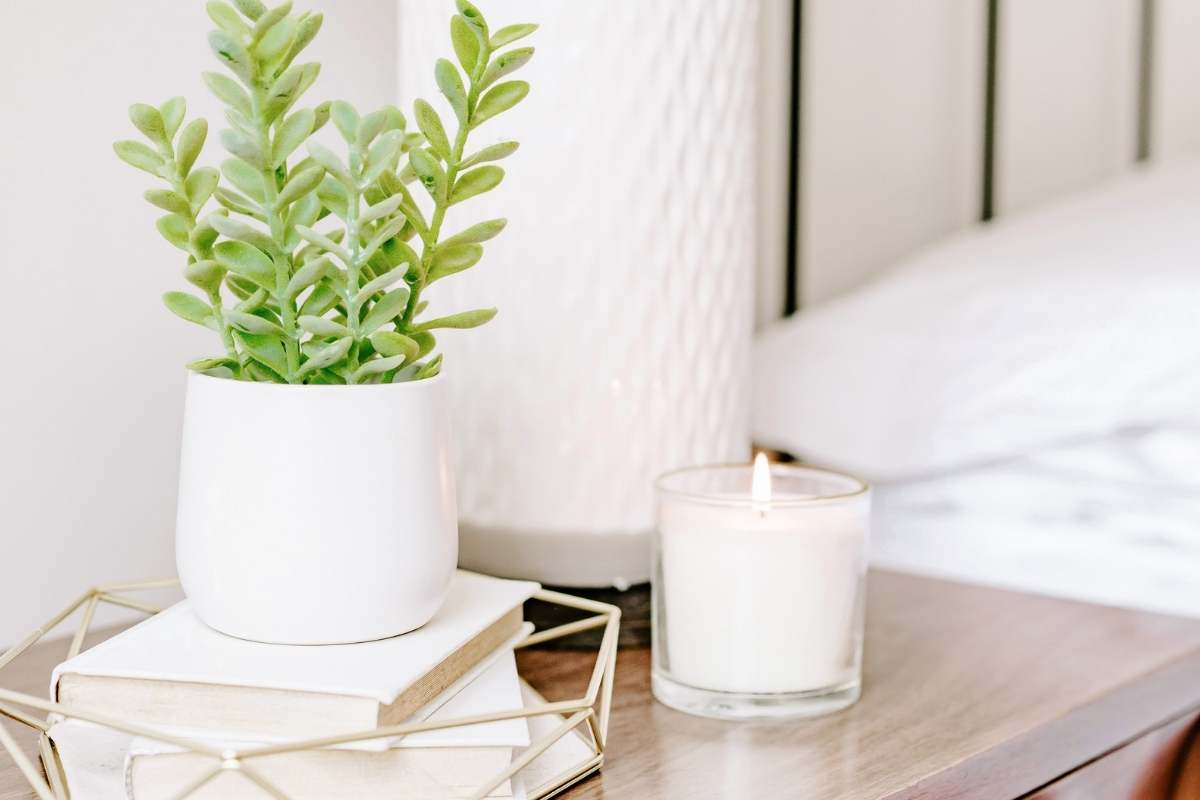 bedside table with plant and coffee cup